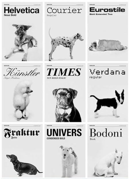 dogtype