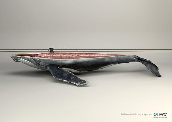 3d _print_whale