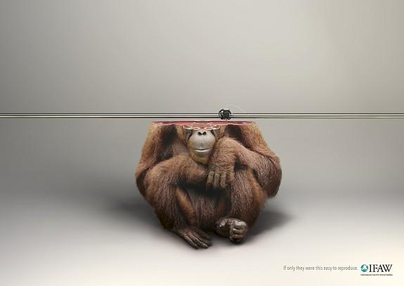 3d _print_orang-utan