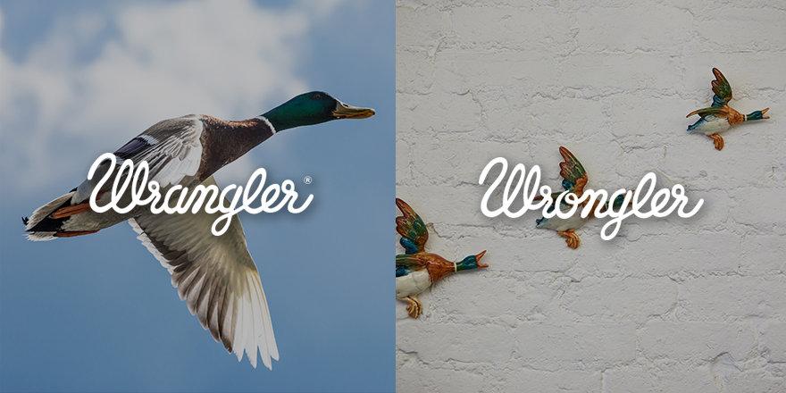 wrongler-10